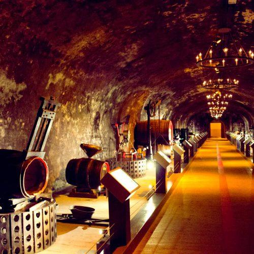 musee memorial de Verdun 00012