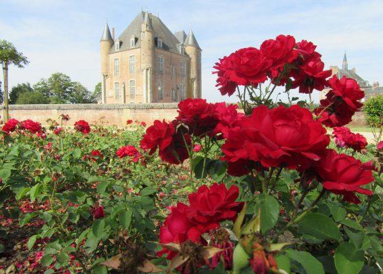 Les roseraies de Bellegarde & voyage à l'Arboretum de Barres