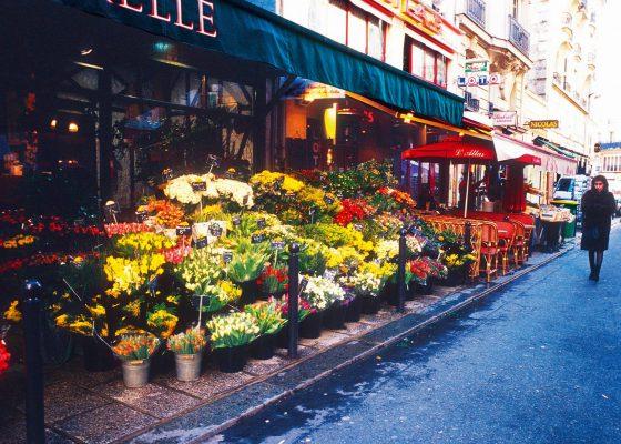 Promenade de Saint Germain des Prés à Saint Michel