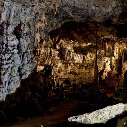 vignoble de chablis et grottes d arcy sur cure 00001